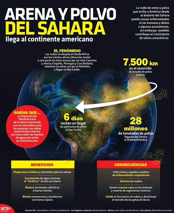 Las nubes de arena y polvo que llega a América desde el desierto del Sahara puede causar enfermedades al ser humano y daños a algunos ecosistemas, sin embargo, también contribuye al crecimiento de selvas amázonicas. #Infographic