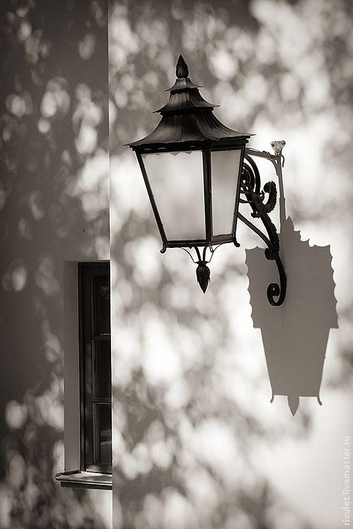 Купить Черно-белая фотография для интерьера «Свет в тени клёна», Павловск - фотокартина, картина для интерьера