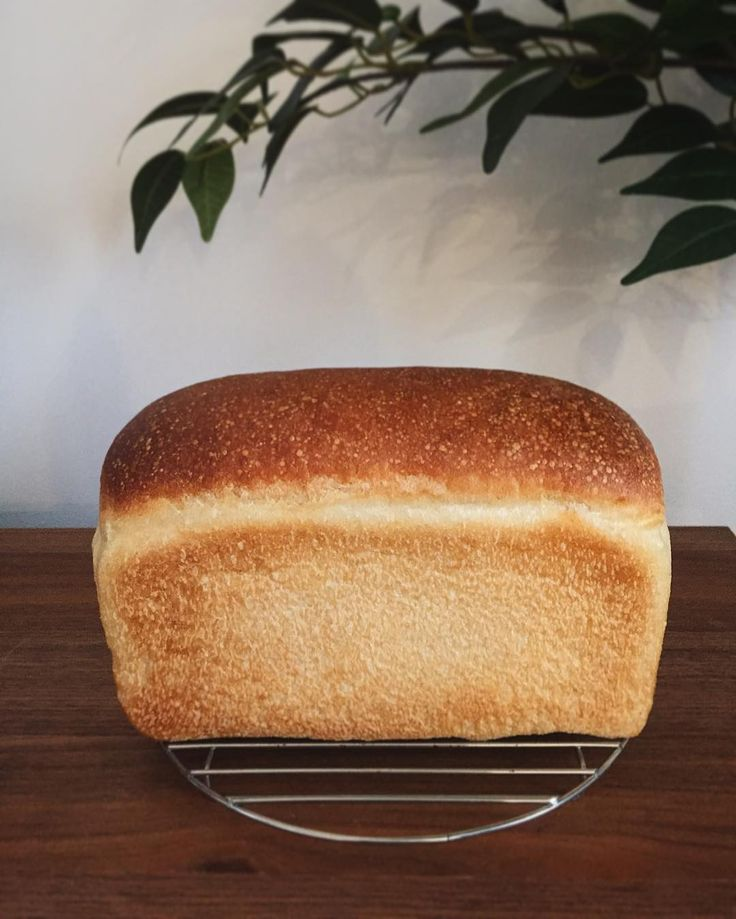 13-May 2016 Long time no baking a loaf. Didn't rise high...but can't wait for checking the crumb  ひっさしぶりにワンローフぜんっぜん窯伸びしませんでしたー でも久しぶりの食パン楽しみ  #instapic#instagood#instalike#bread#naturalyeast#naturallyleavened#loaf#bread#realbread#foodphotography#homemade#homebaker#baking#bakery#baker#friyay  #自家製酵母#天然酵母#暮らし#日々#kurashiru#パン#おうちパン#手作り#手作りパン#食パン#ワンローフ by nozomimandic