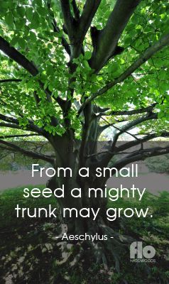 From a small seed a mighty trunk may grow. ~Aeschylus  #FLOhardwoods