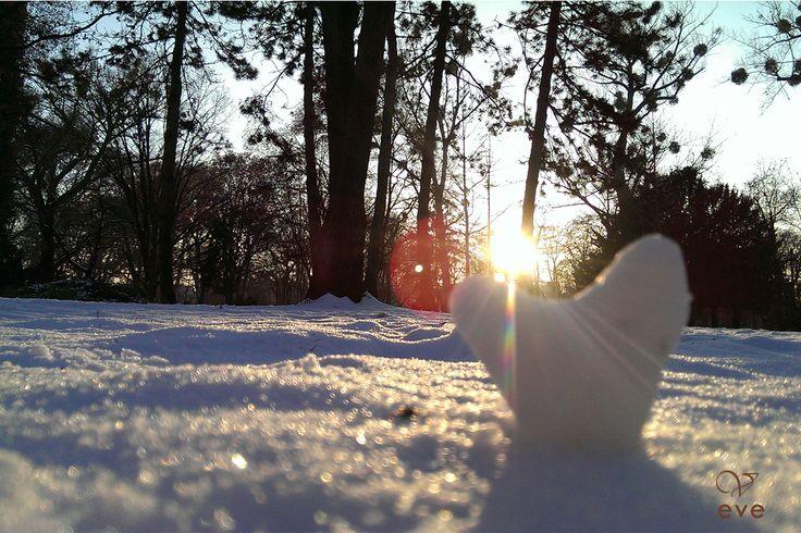 Snowheart. Sunshine.