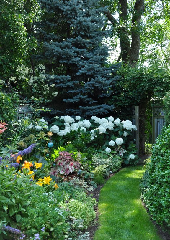 Best 25 hydrangea landscaping ideas on pinterest for Narrow flower bed ideas