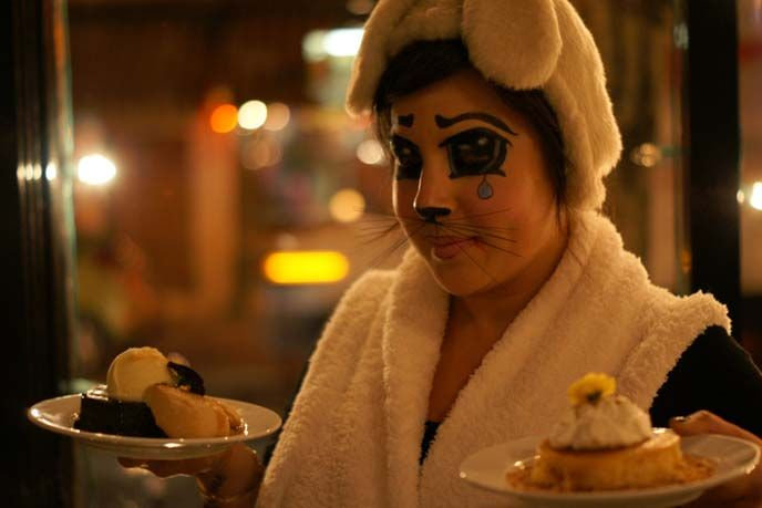 bunny costume, anime eyes, desserts: pumpkin cheesecake, and spicy gingerbread served warm with honey, roasted pears and vanilla ice cream
