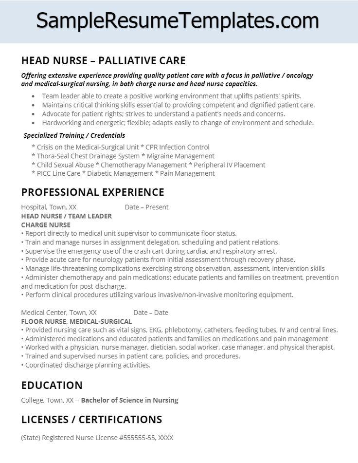 Palliative Care Head Nurse Resume Charge nurse, Nursing