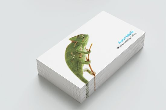 ZenithOptimedia Business Card Design
