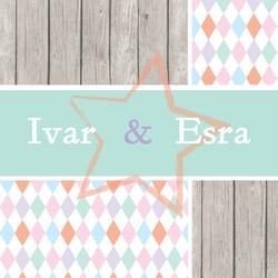 Lief tweelingkaartje met sloophout | tweeling geboortekaartje | harlequin