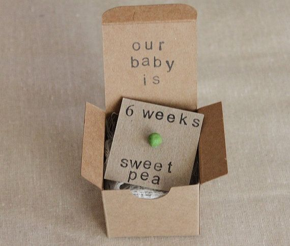Set of 6 6 week Pregnancy Announcements How Big by ThePartyPosse