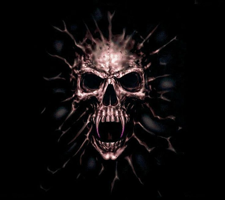 scary skulls images | scary,skull,horrible,angry,anger,
