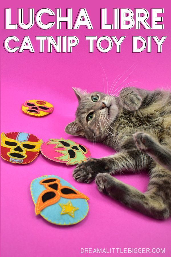 Diy Lucha Libre Cat Toys Cat Toys Diy Cat Toys Catnip Toys
