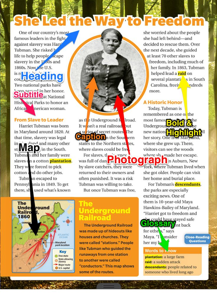 """""""Navigating Digital Texts With Skitch"""" 