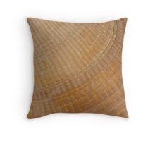 Throw Pillow.  #scallopseashell #seashell #seashellmacro #macro #sandrafoster #sandrafosterredbubble