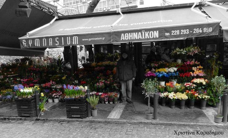 """Τα γνωστά """"λουλουδάδικα"""" της Θεσσαλονίκης, ίσως μια από τις ομορφότερες γωνιές της πόλης μας. Ακόμα και στις βροχερές μέρες. Φωτογραφία: Χριστίνα Καραδήμου  #εΜΜΕίς #eMMEis #thessaloniki #καληνύχτα"""