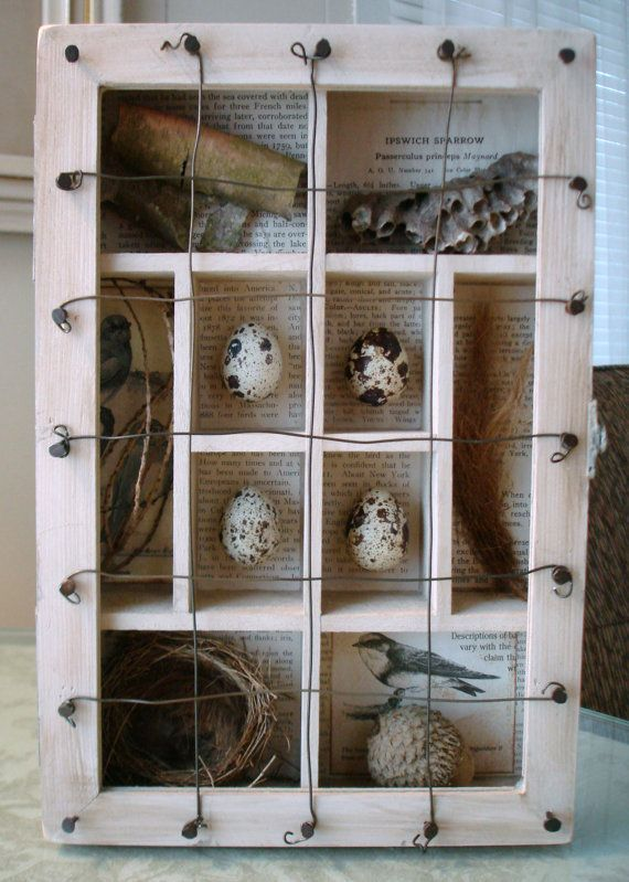 This assemblage has been created inside of a wonderful box filled with many sections. Ive added several different elements of nature. The smallest
