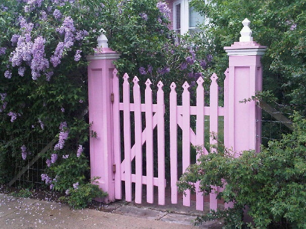 lilac gate...colorado