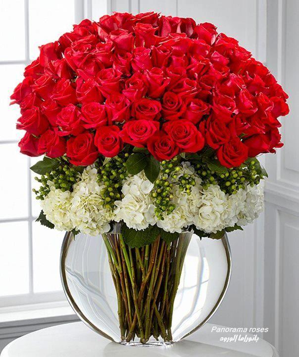arranjo de rosas brancas e vermelhas