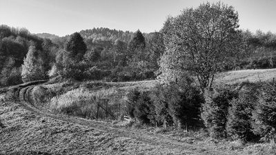 bwstock.photography - photo | free download black and white photos