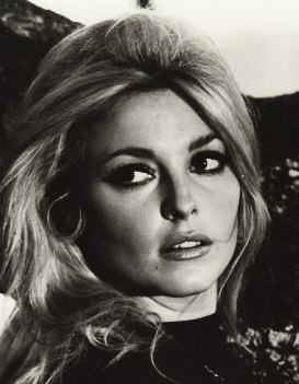 The gorgeous Sharon Tate.