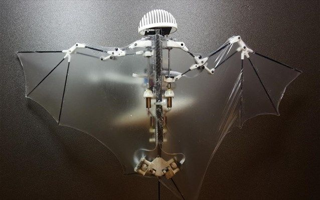 a-special-edition: Bat Bot: Drone που μιμείται τις νυχτερίδες
