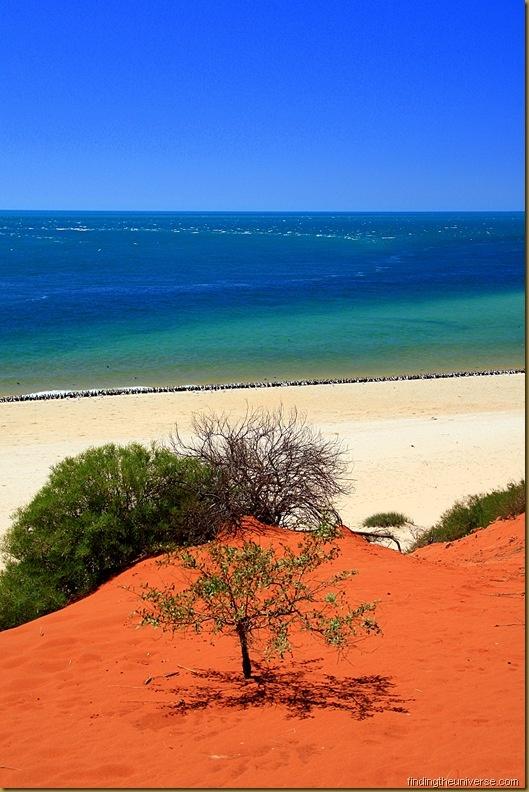 Francois Peron National Park, within the boundary of the Shark Bay World Heritage area, Western Australia