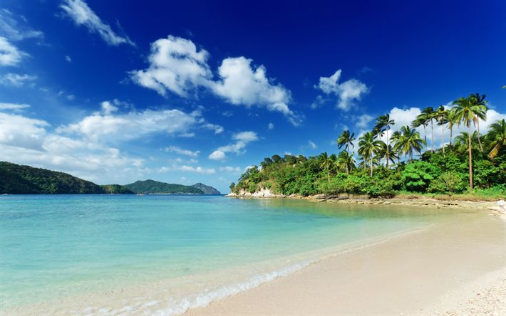 Download wallpapers Tropical island, summer, ocean, beach, palm trees, summer vacation, blue sky