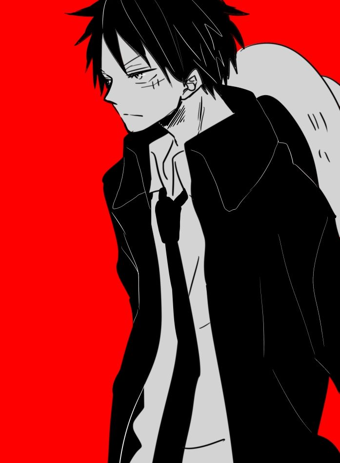Monkey D. Luffy I can't believe it! Is that a dress shirt? And a TIE? *faints*