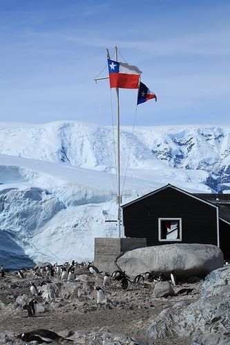 Antartica Chilena. It is practically uninhabited except for research stations of various countries, although Chile maintains a permanent civilian population at Villa Las Estrellas (near Frei Montalva Station), including women and children, a small school, and even a bank, in order to support its territorial claim of the area. The official population for the area as of the census 2002 is 130 (115 male, 15 female). This does not include the staff of non-Chilean bases in the area. (V)