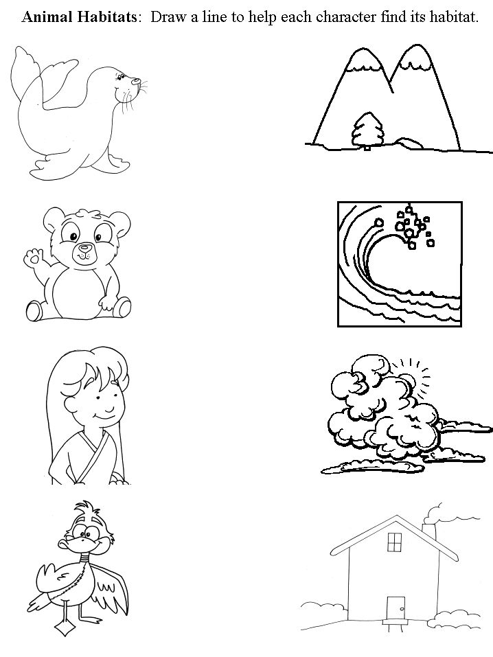 worksheet that connects animal with habitat preschool animal habitats pinterest activities. Black Bedroom Furniture Sets. Home Design Ideas