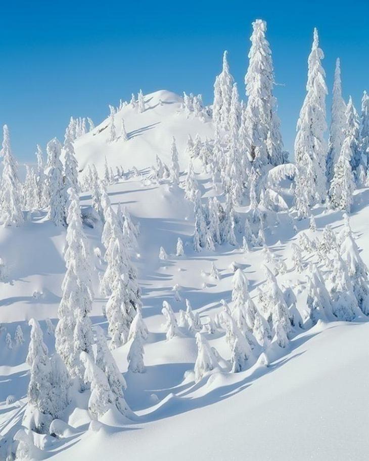 Paisajes nevados alrededor del mundo