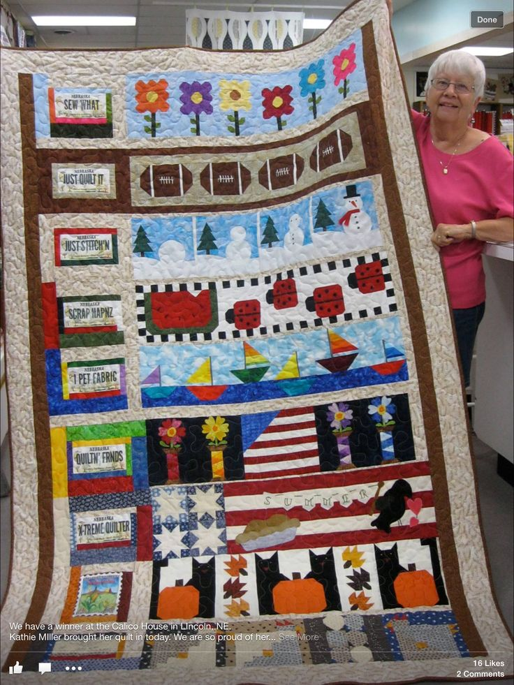 240 best 2014 Row by Row Experience- finished quilts & Winners ... : lincoln ne quilt shops - Adamdwight.com