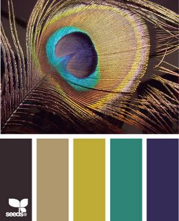 Peacock Colors - finally a palette that works for what I want in our bedroom! And go figure - it's a peacock.