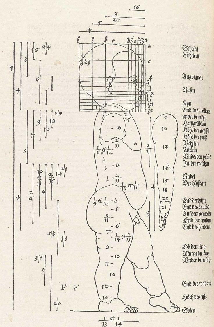 """Albrecht Dürer (1471-1528) rimase affascinato non solo dall'arte ma anche dalle scienze, come la prospettiva del corpo umano.  Il """"Vier Bücher von menschlicher Proportion""""  è diviso in quattro parti: le prime due discutono le appropriate proporzioni della forma umana, la terza aggiusta le proporzioni usando regole matematiche, con esempi di corpi estremamente grassi e magri, mentre la quarta parte mostra la figura umana in movimento."""