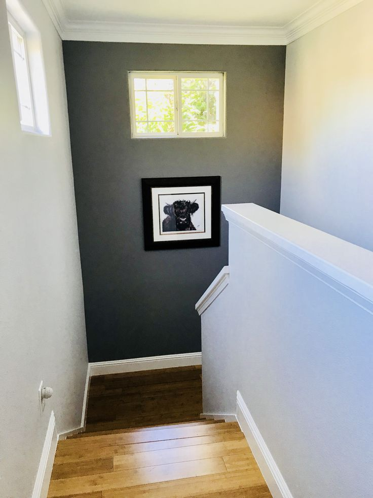 SW's Gray Shingle accent wall give this stairwell more ...