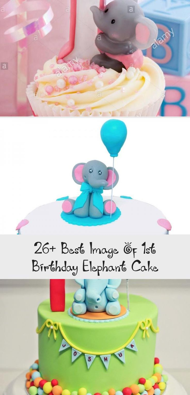 26+ Best Image Of 1st Birthday Elephant Elephant