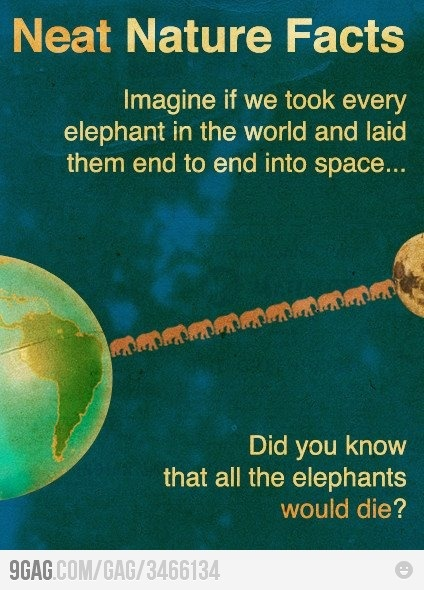 :): Elephants, Funny Stuff, Humor, Nature Facts, Space, Neat Nature, Science