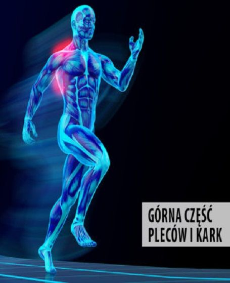 Ból pleców i karku. http://tvnmeteoactive.tvn24.pl/bieganie,3014/bol-plecow-i-karku,162057,0.html