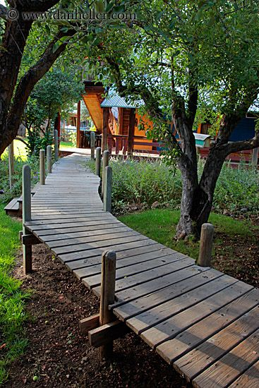 Wooden sidewalk to get over my rough backyard.  I see ornamental grasses growing up alongside it.