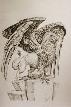 ... Griffin Tattoo on Pinterest