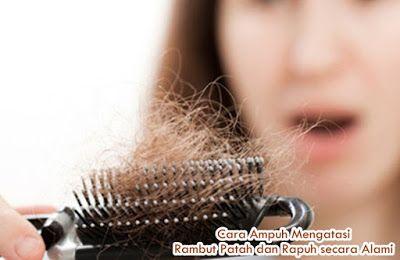 Cara Ampuh Mengatasi Rambut Patah dan Rapuh secara Alami