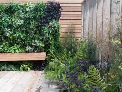 10 Best Living Walls Garden Design Images On Pinterest | Garden