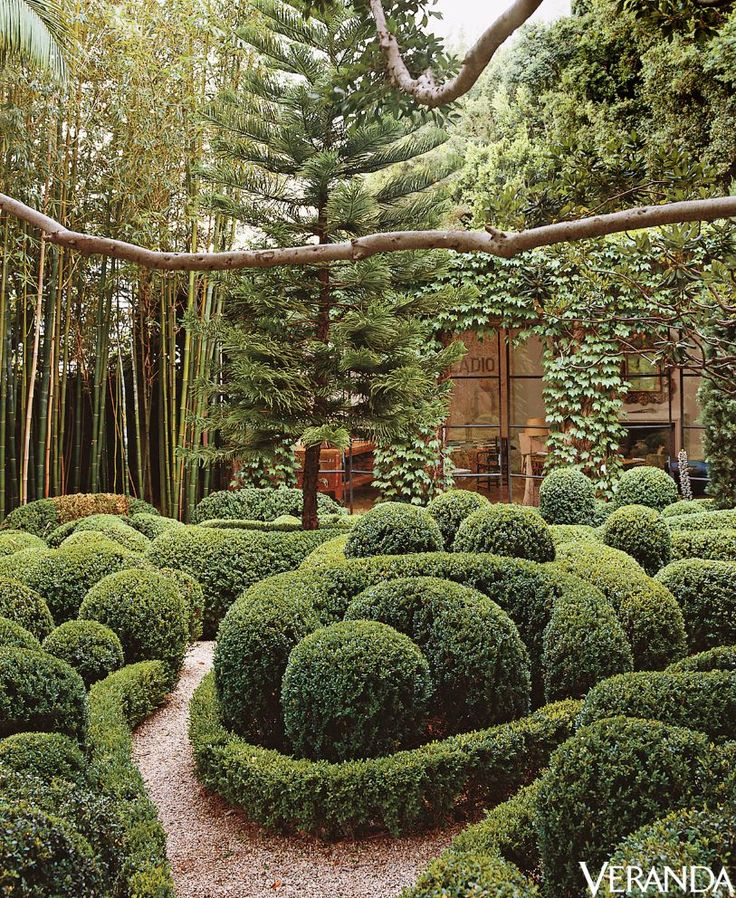 22 Tree Shade Landscaping Ideas For Your Yards: Best 25+ Landscaping Around Trees Ideas On Pinterest