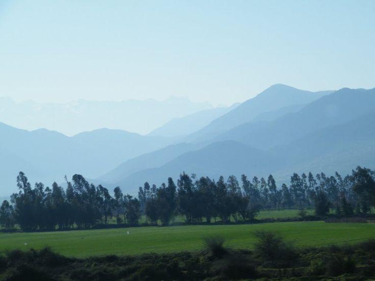 Cerranía de la zona central,  San Fernando, Región del Libertador General Bernardo O'Higgins, Chile