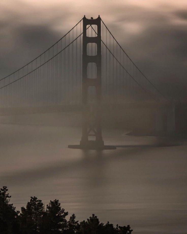San Francisco Fog Map Live%0A      Twitter  Travel LogSan Francisco