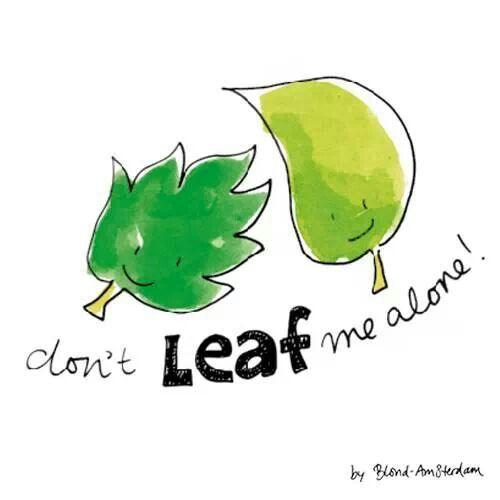 Don't leaf me alone blond amsterdam