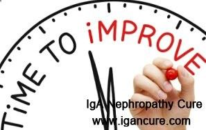 IgA Nephropathy impairs your kidney function without timely and effective treatment. Nephron is the basic unit of kidney function. How to improve nephron function for IgA Nephropathy patients?
