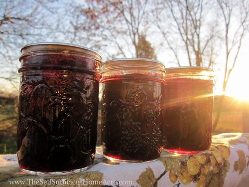Making Blueberry Jam from Frozen Blueberries For more information, see my post How to Make Jam from Frozen Fruit. My friend Audrey just moved out of state and gave me the fruit she had picked and frozen from her garden this summer. I came home with lots of blueberries …
