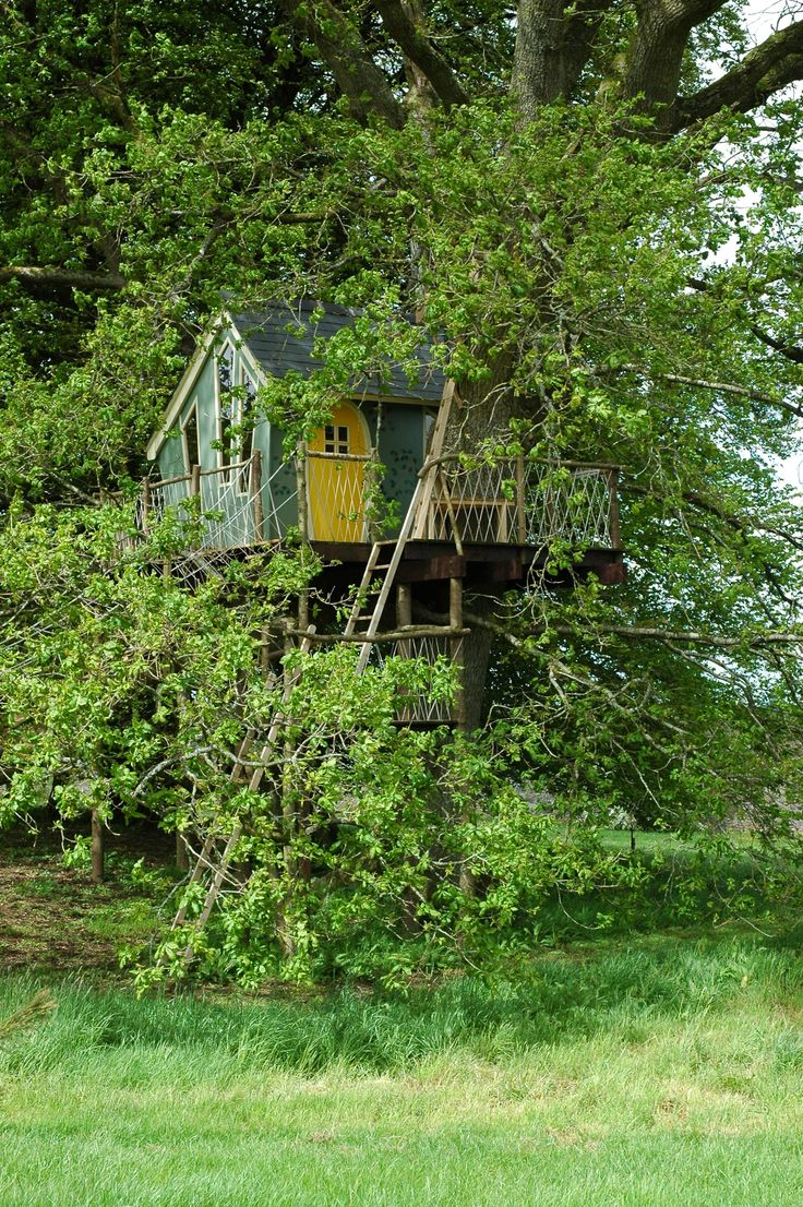 Dr Zeuss Inspired Tree House Nestled in Foliage