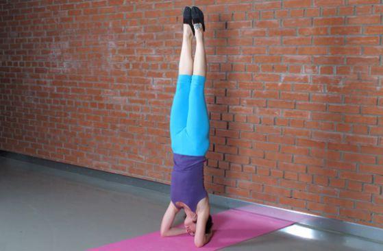 Йога для начинающих: стойка на голове :: Фотокомплексы :: JV.RU — Фитнес, здоровье, красота, диеты