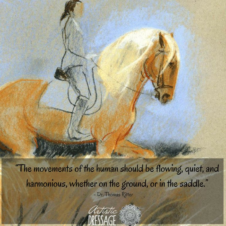 """""""The movements of the human should be flowing, quiet, and harmonious, whether on the ground, or in the saddle.""""  - Thomas Ritter artisticdressage.com"""