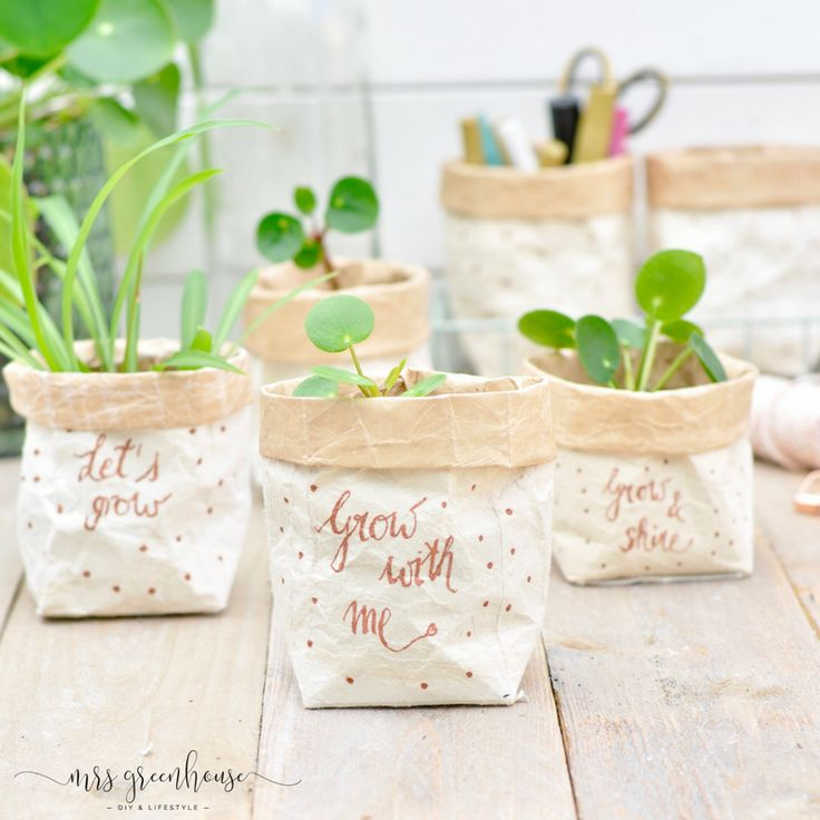 Milchtüten-upcycling – DIY für kleine Pflanztöpfe auf mrsgreenhouse.de – Rue du