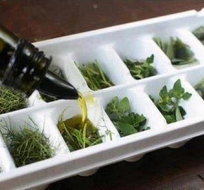 CONSERVARE LE ERBE AROMATICHE  Inserite le erbe negli stampini per cubetti di ghiaccio piccoli, coprite di olio d'oliva e mettetele in freezer fino al momento del bisogno.